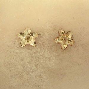 Jewelry - FLOWER EARRINGS - COSTUME!